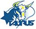 taurustorino_logo_mini